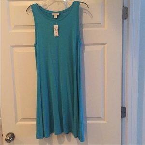 NWT Loft Shift Dress